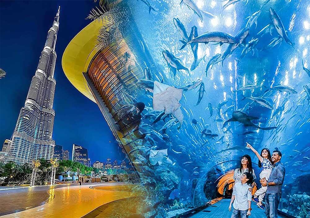Dubai Mall Aquarium & Burj Khalifah - Luxuria Tours & Events