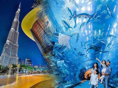 Dubai Mall Aquarium & Burj Khalifah - Luxuria Tours & Events
