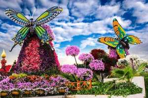Dubai Miracle Garden - Luxuria Tours & Events