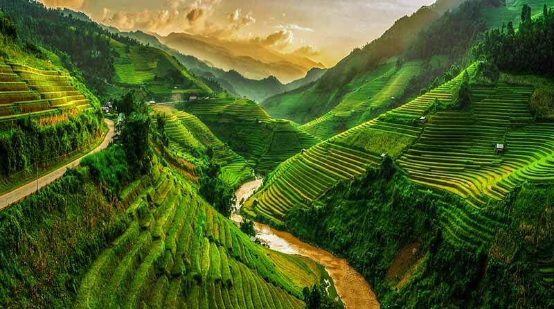 Vietnam Rice Terraces -Luxuria Tours & Events