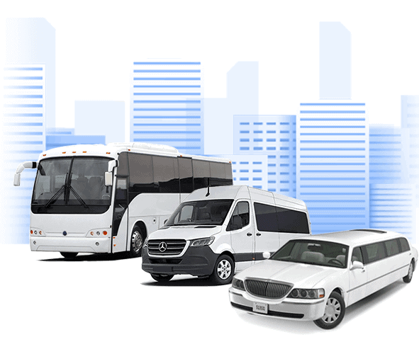 Transportations - Luxuria Tours & Events