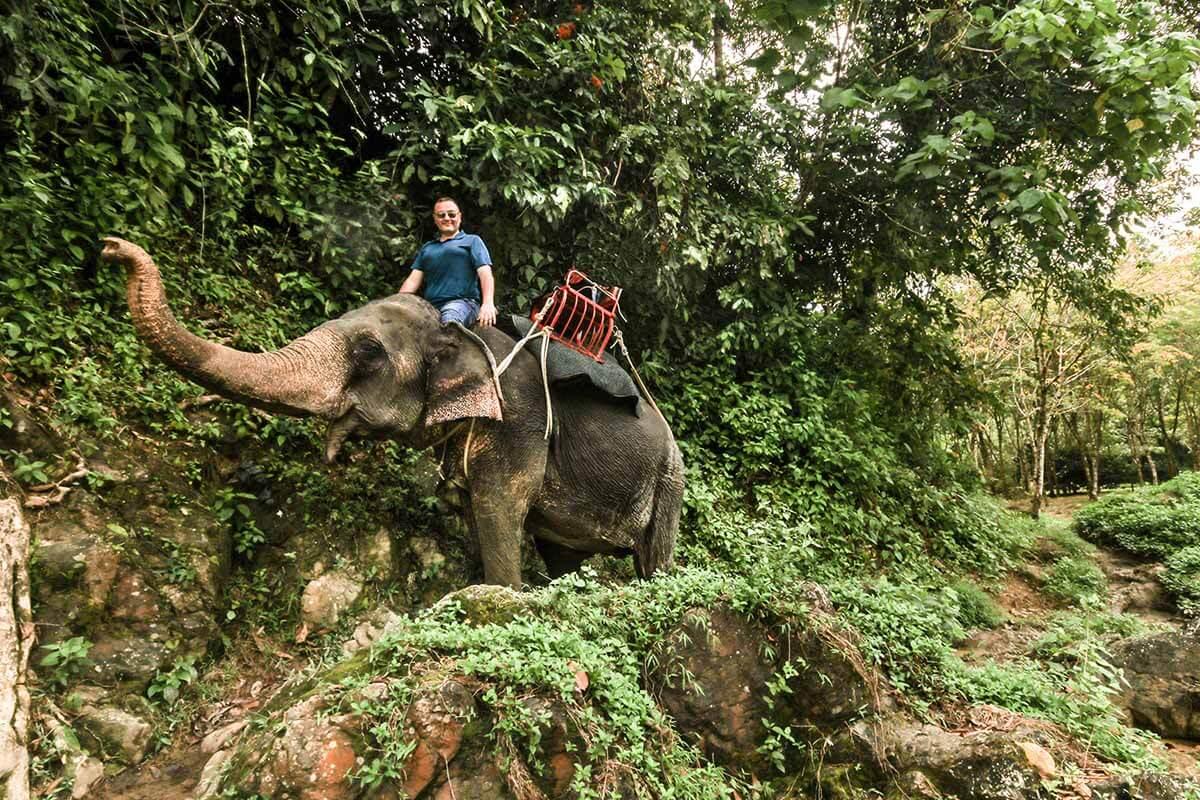 Elephant Ride 4, Phuket, Thailand