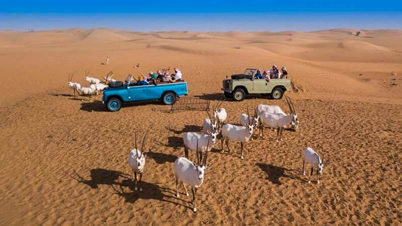 Vintage Land Rover Drive