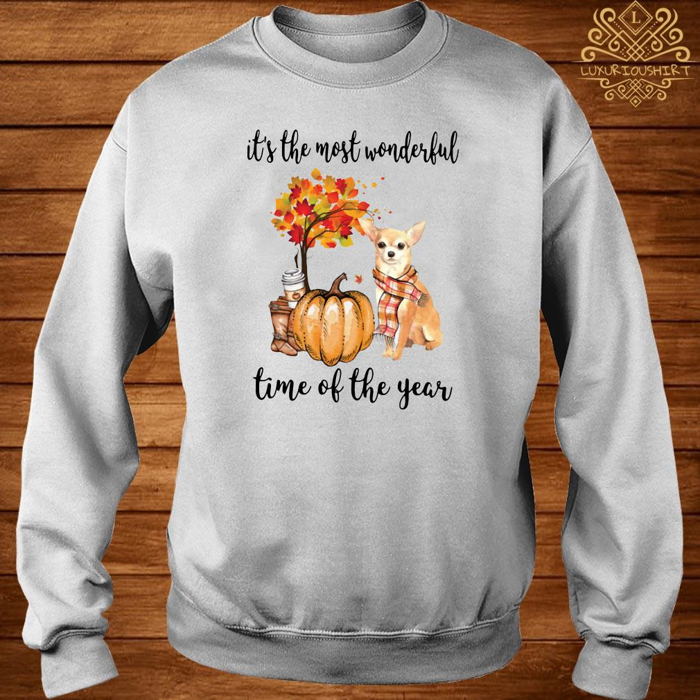 Chihuahua it's the most wonderful time of the year sweater