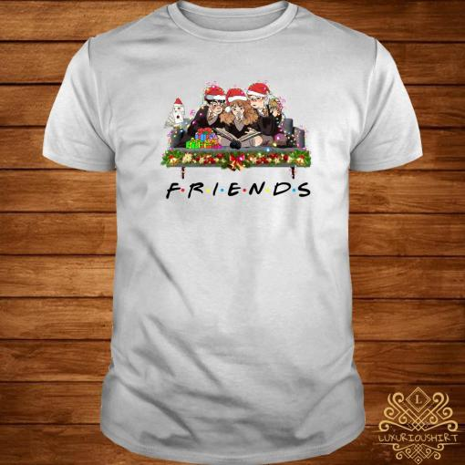 Harry Potter Christmas Shirt.Harry Potter Ron And Hermione Friends Christmas Shirt