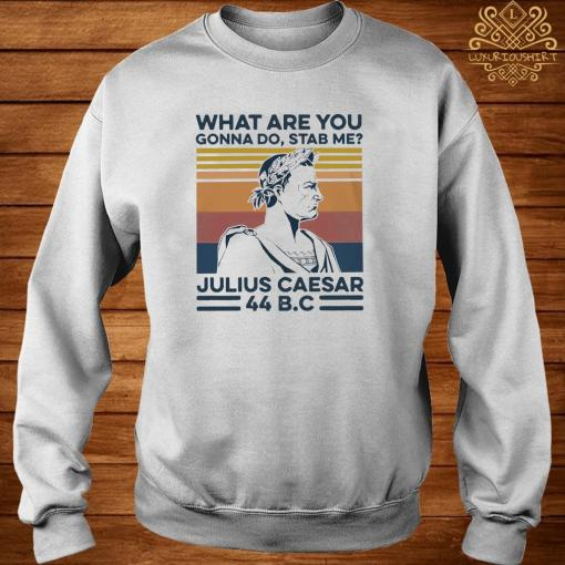 What Are You Gonna Do Stab Me Julius Caesar Shirt sweater