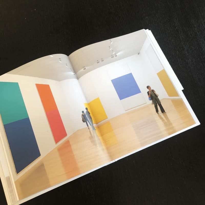Olivier-Mosset-Monography