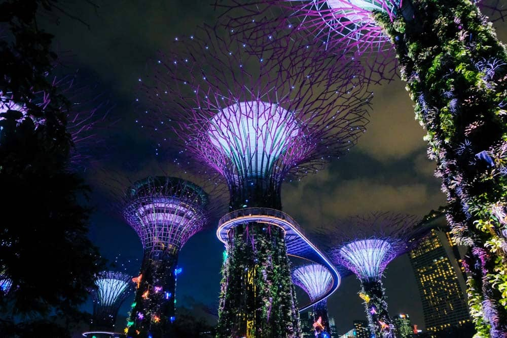 singapore-garden-by-the-bay