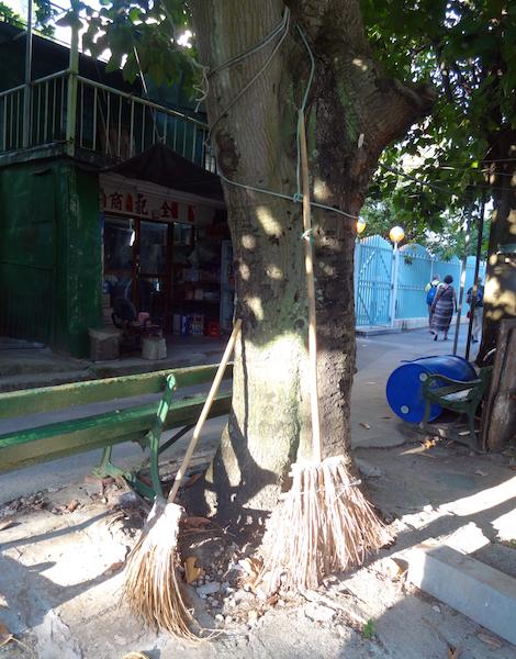 angelas-asia-hong-kong-travel-blog-best-day-trip-tai-o-30