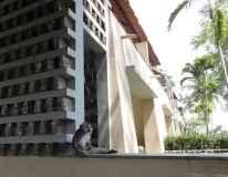 best-5-star-hotel-villa-ubud-alila-bali-luxury-bucket-list-blog-angela-carson-120