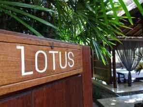 best-5-star-hotel-villa-ubud-alila-bali-luxury-bucket-list-blog-angela-carson-125
