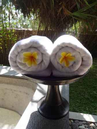 best-5-star-hotel-villa-ubud-alila-bali-luxury-bucket-list-blog-angela-carson-128