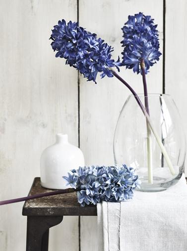 Neptune Hyacinth copy