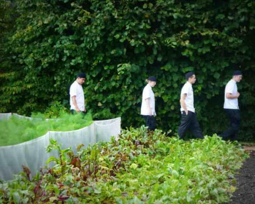 Le Manoir chefs - Luxury Columnist