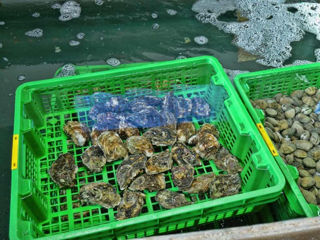 Les Perles de Monte-Carlo oysters