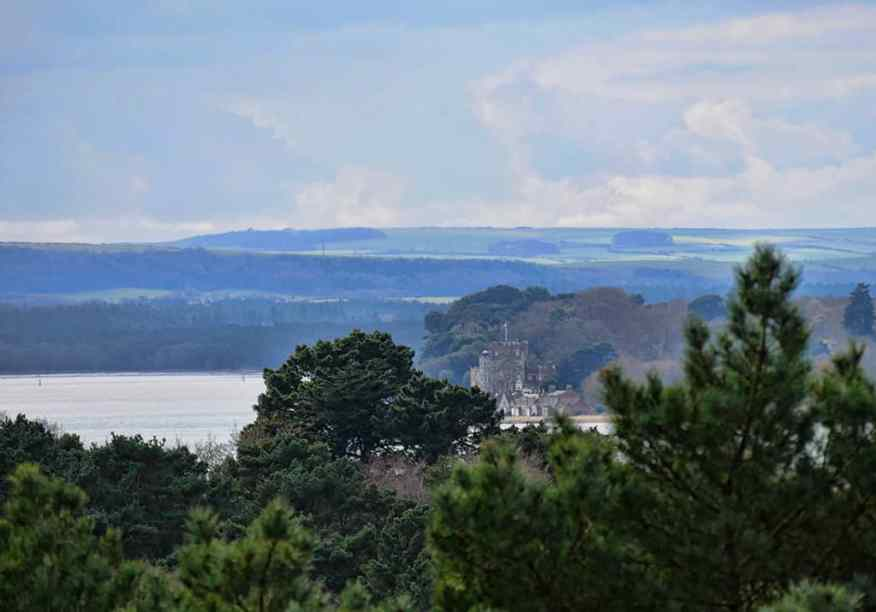 brownsea-island-compton-acres