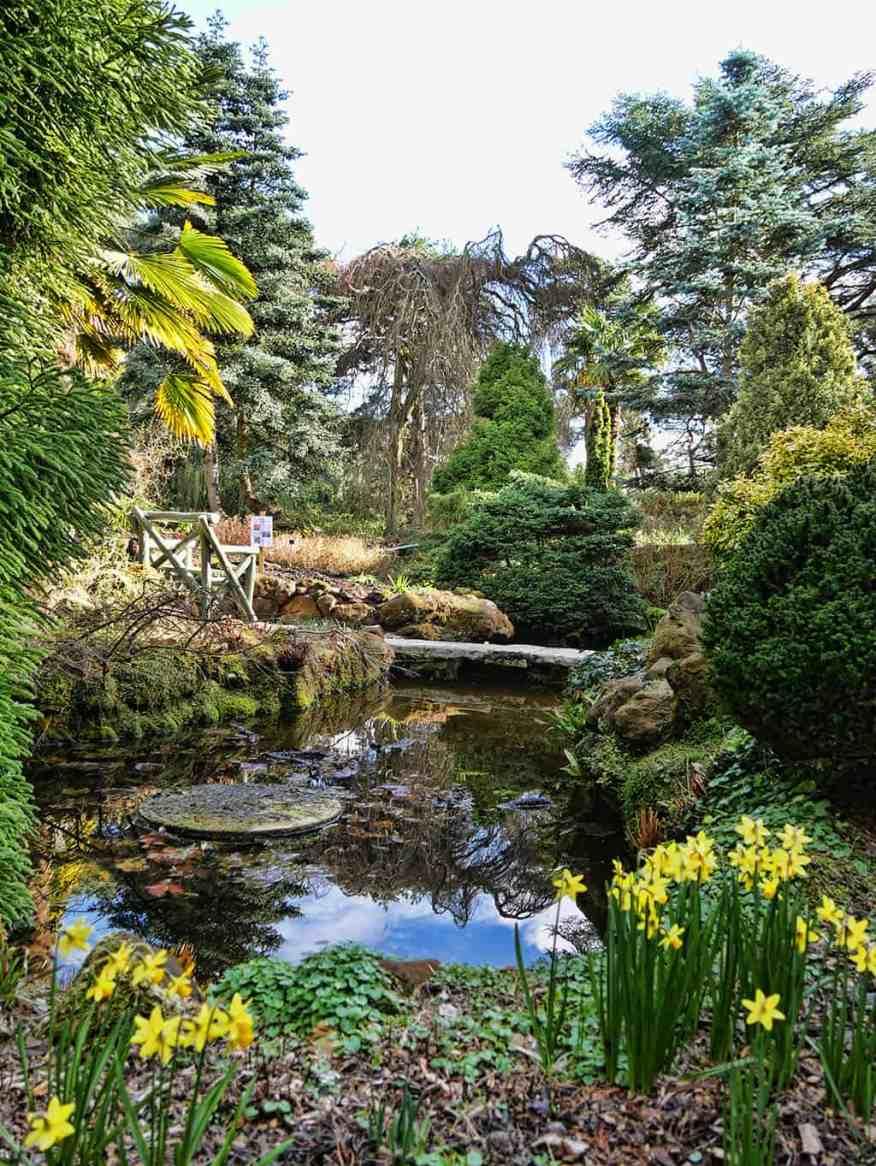 water-garden-compton-acres