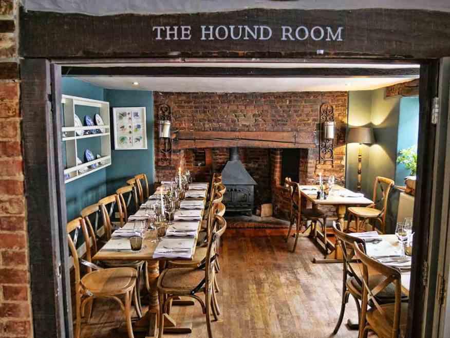 hound-room-greyhound