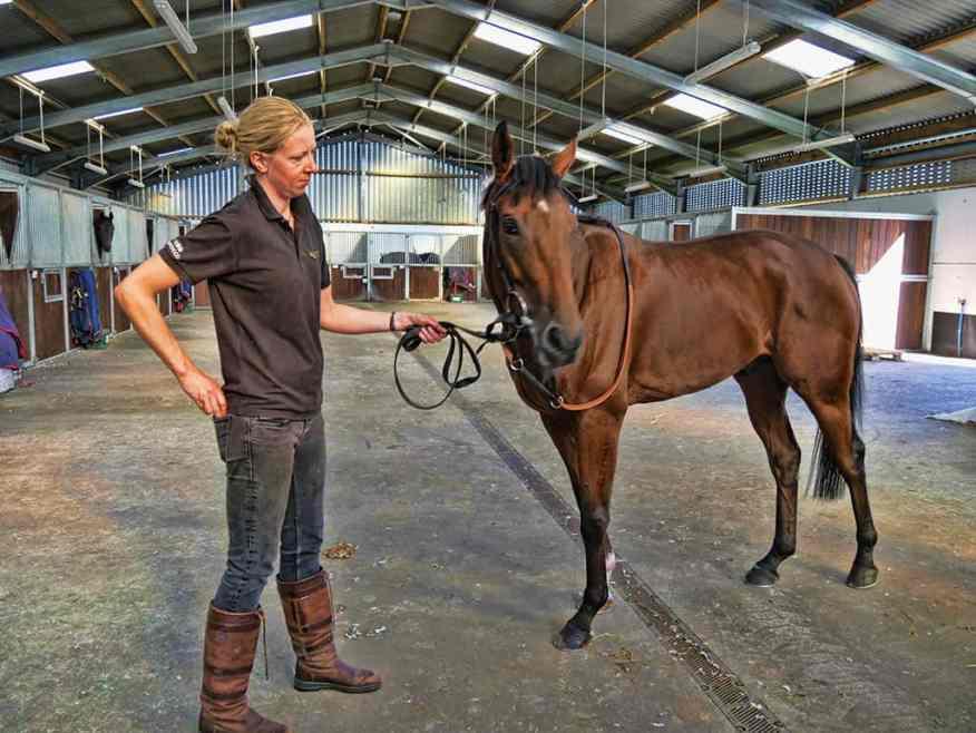 kingsclere_stables