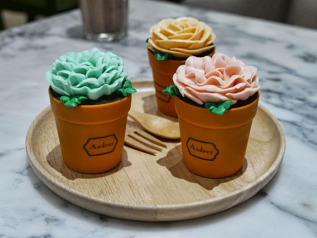 audrey-flowerpot-cake