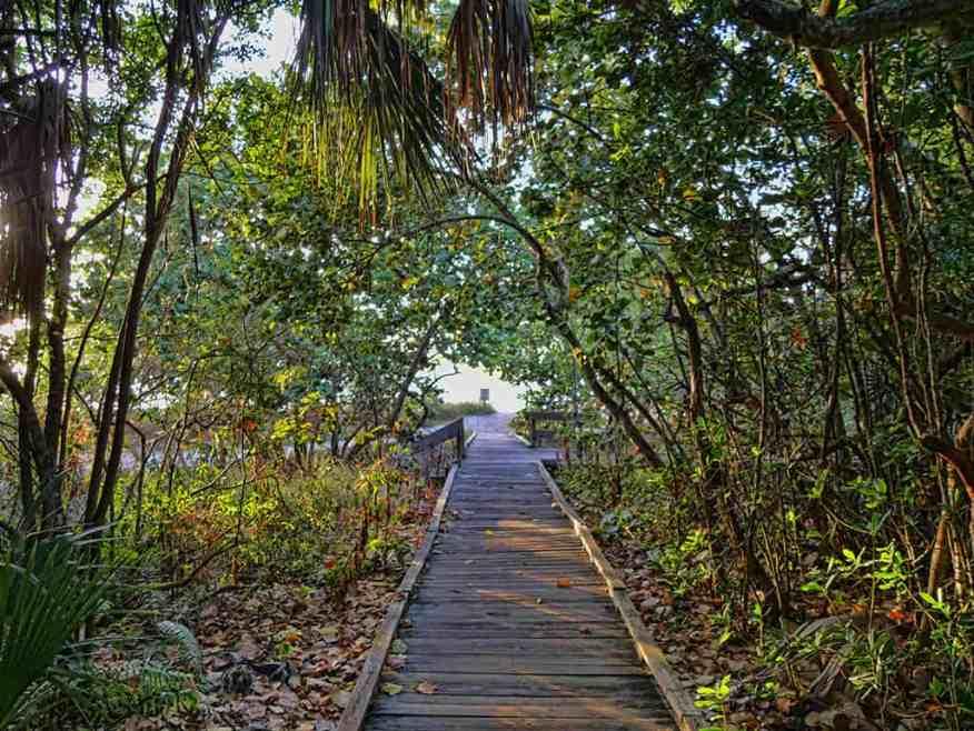national_park_boardwalk_florida