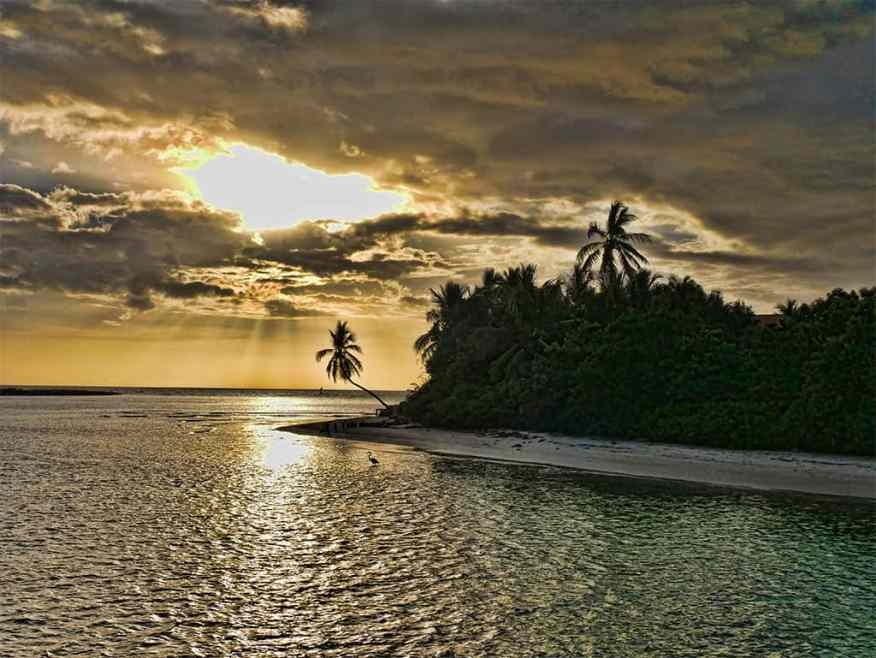 sunset_catamaran_cruise_heron
