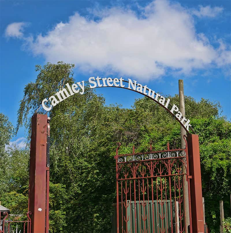 Camley Street Natural Park - a lovely nature reserve near Kings Cross, London