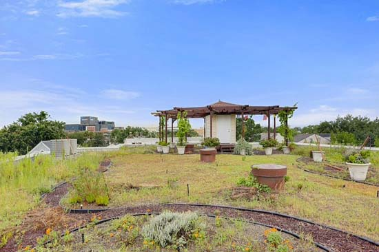 La Case de Castile - Green Roof and arbor