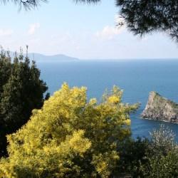 Villa Cala Moresca | On The Argentario Sea in Tuscany