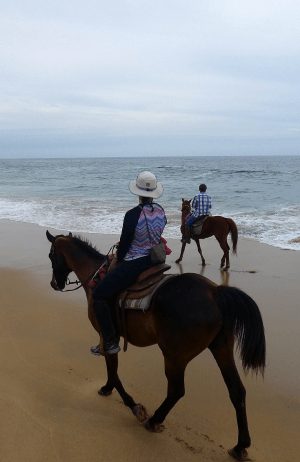 Baja horseback riding with Todos Santos Eco Adventures: marshy lagoon, beach, and desert