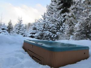 Hot Tub at Montebello Vacation Rental by Owner in Whistler BC