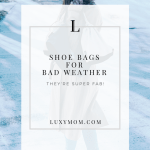 Shoe Bags for Bad Weather