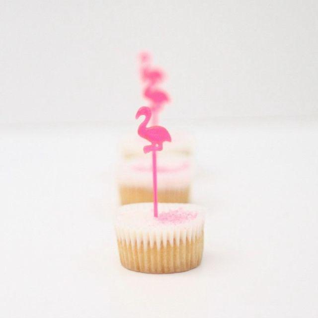 flamingo-picks_5c4020cb-8453-4218-bf61-15d32ec69edc-2