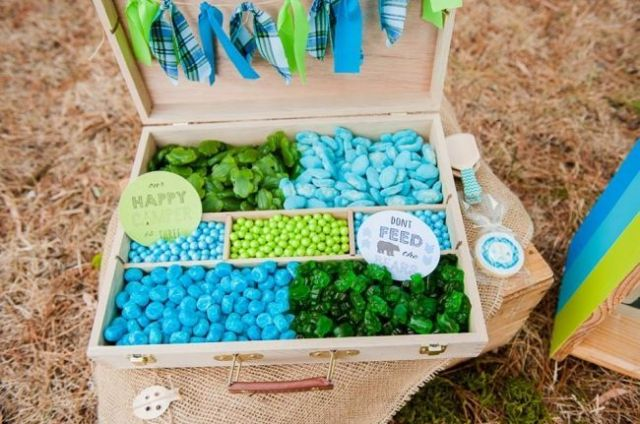 boys-camping-birthday-party-candy-table