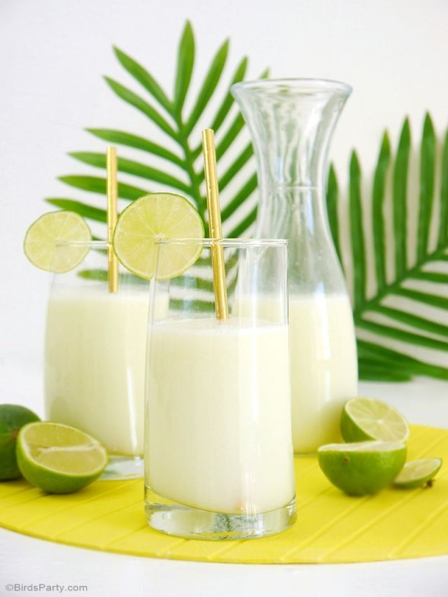 brazilian-lemonade-limeade-recipe-suica07 (1).JPG