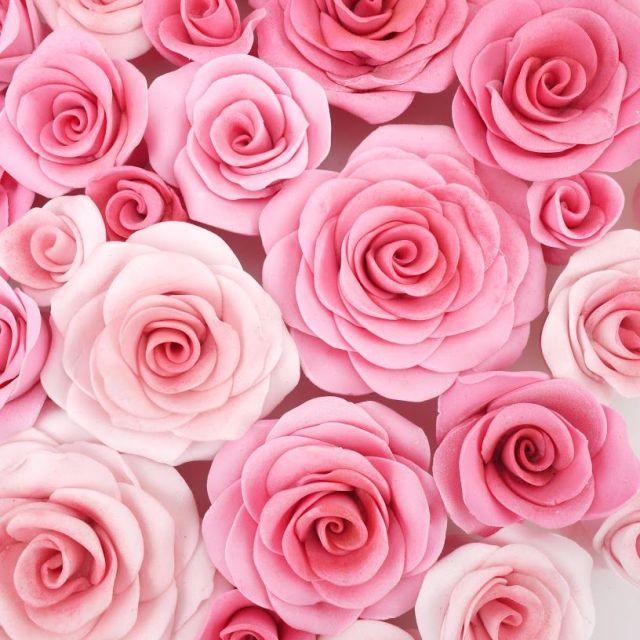 easiest_rose_ever_fmm_cutter.JPG