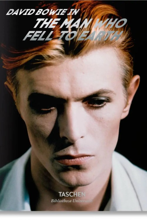 DAVID BOWIE THE MAN WHO FELL TO EARTH (FR/A