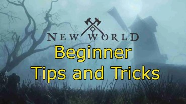 New World Tips