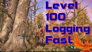 Level Logging