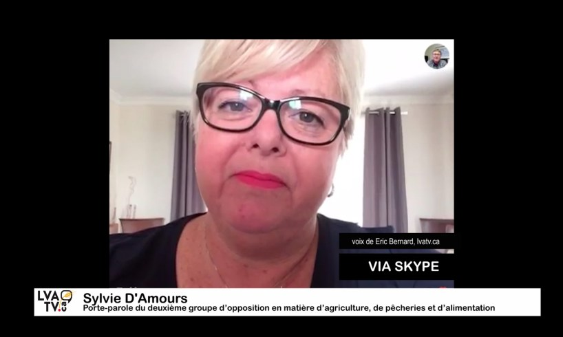 Sylvie D'Amours via Skype