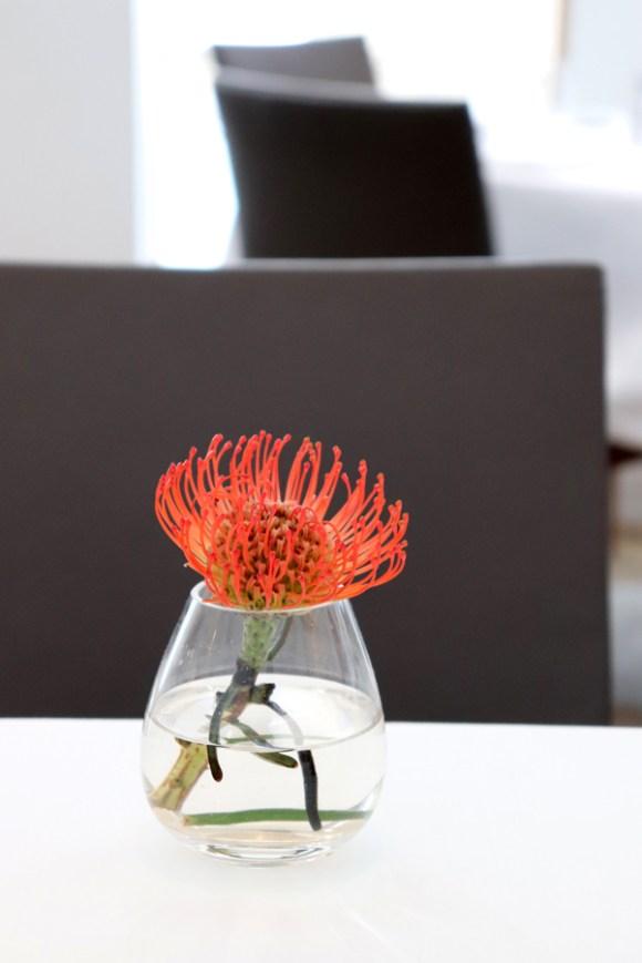 Bonhams Restaurant Interior @ Lavender's Blue Stuart Blakley