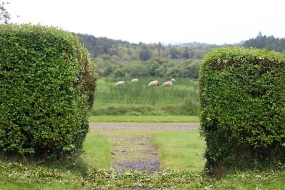 Annaghmore Sligo Estate © Lavender's Blue Stuart Blakley