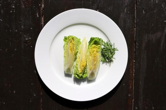Sinabro Baby Gem Salad © Lavender's Blue Stuart Blakley