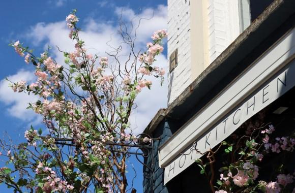 Kibou Japanese Restaurant Canopy Northcote Road London © Lavender's Blue Stuart Blakley