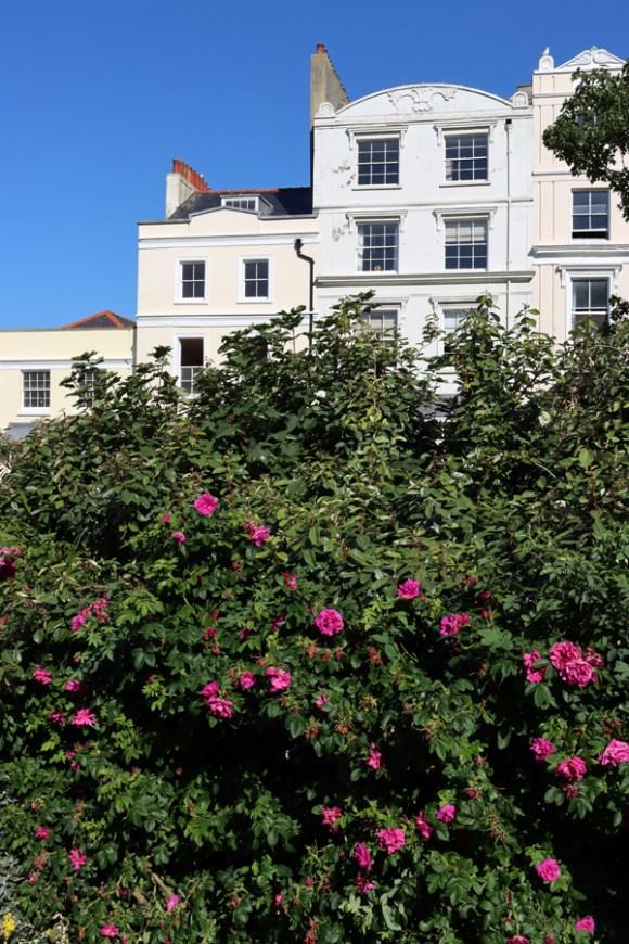 Terraces Wellington Square Hastings East Sussex © Lavender's Blue Stuart Blakley