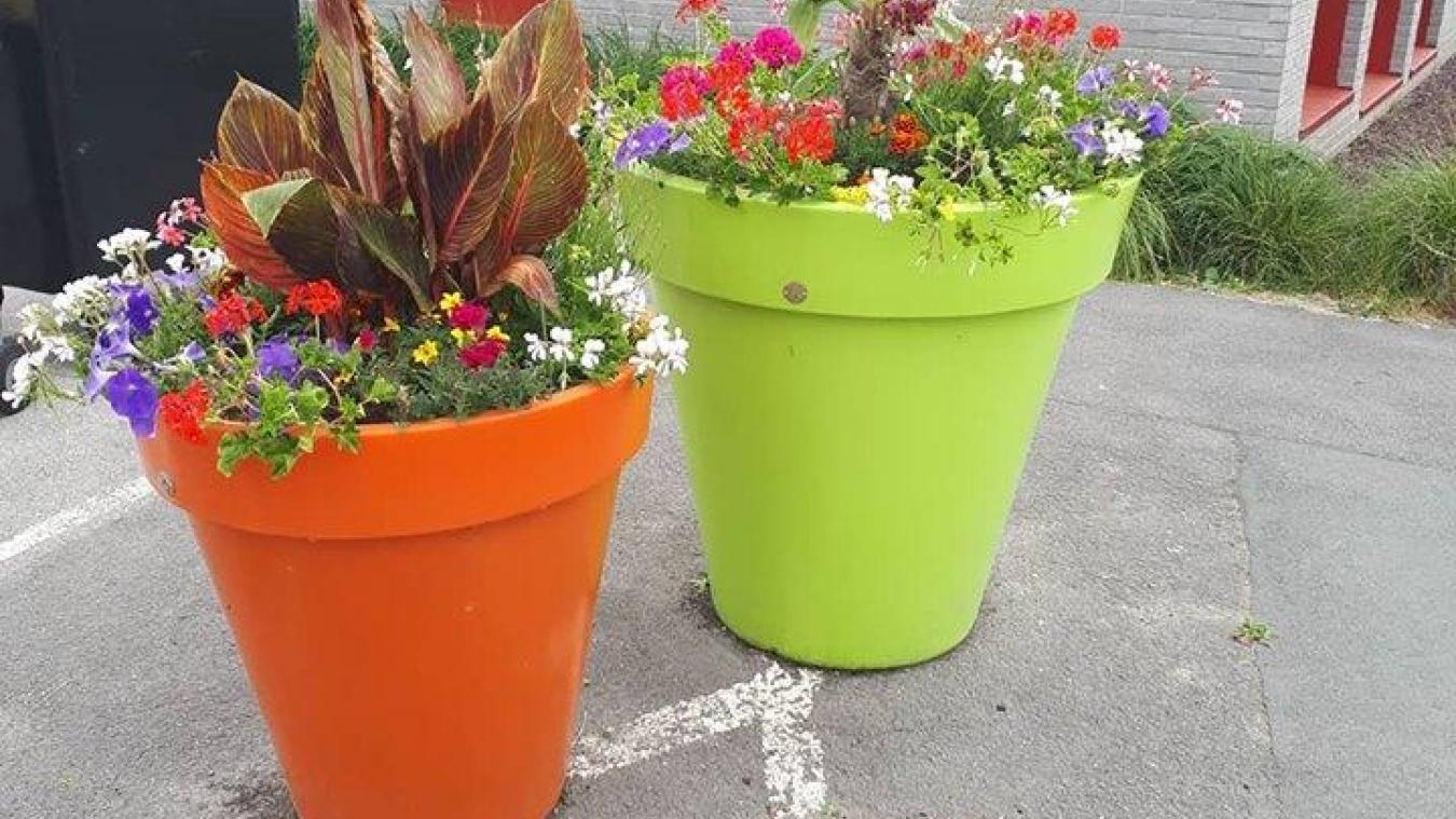 winnezeele des vols de pots de fleurs et de jardinieres a repetition dans le village