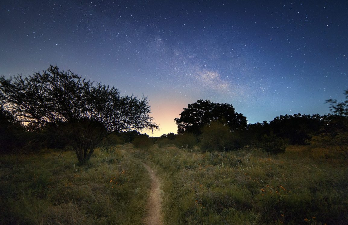 Night-time walking path through the Purgatory Creek natural area hiking trail with a starry sky and tall grass.