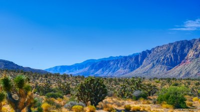 A desert valley