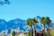 palms-homes-mountains