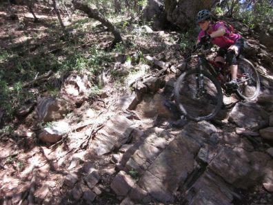 Widowmaker Noble Canyon